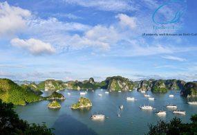 Du Lịch Hạ Long 3 Ngày 2 đêm Bằng Du Thuyền Golden Bay ( 1 đêm Tàu – 1 đêm Ngủ Bungalow ở đảo Nam Cát )