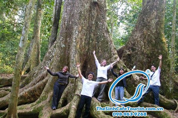 Tour du lịch Rừng Cúc Phương