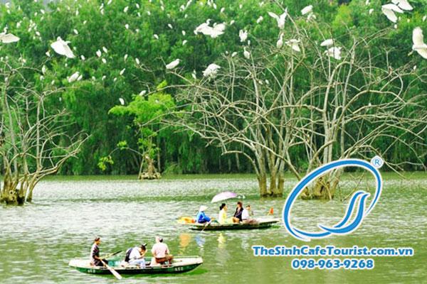Du lịch Ninh Bình chiêm ngưỡng vườn chim Thung Nham