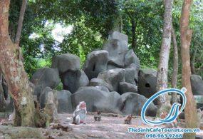 Tour Du Lịch Cát Bà – Vịnh Lan Hạ – Đảo Khỉ 1 Ngày
