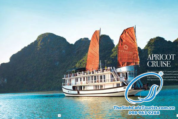 tour-Ha-long-Golden-Sun-Cruise4