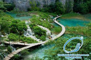 Tour Vườn Quốc Gia Bạch Mã 1 Ngày