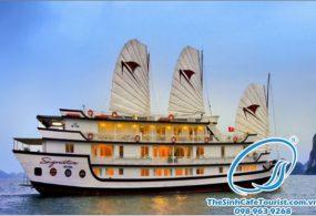 Du Thuyền Hạ Long Signature Cruise 3 Ngày 2 đêm