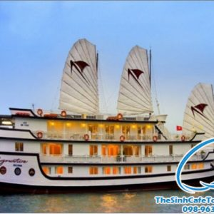 Du Thuyen Ha Long Signature Cruise 5 Sao Gia Re