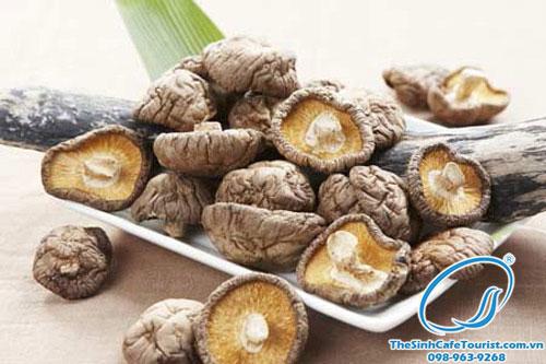 10 món đặc sản sapa nhất định phải thử khi đến nấm hương