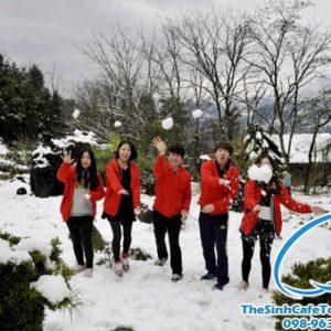 Sapa Có Tuyết Rơi Vào Tháng Mấy