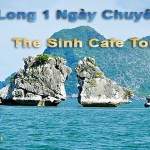 Tour Hạ Long 1 Ngày Chuyên Nghiệp- The Sinh Tourist