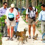 Tour Du Lịch Hà Nội Cát Bà Giá Rẻ 3 Ngày 2 Đêm – The Sinh Cafe Tourist