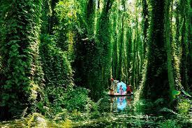 Tour Du Lịch Mekong Delta 3 Ngày 2 Ðêm – Rừng Tràm Trà Sư