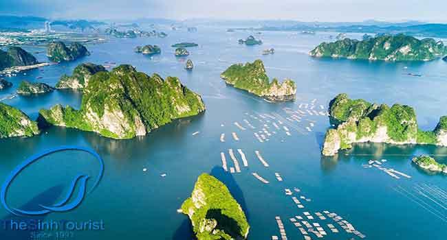 Vịnh Hạ Long– 1 trong 7 kỳ quan Thiên nhiên Thế giới